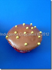 Chocolate with chocolate cream cheese frosting (12)