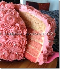 Pink Ombre cake (19)