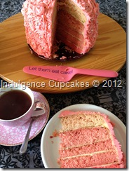 Pink Ombre cake (1)