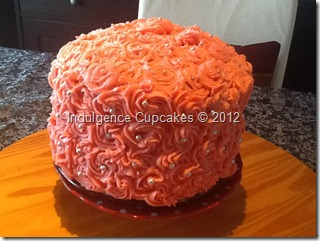 Pink Ombre cake (2)